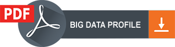 Big Data Profile