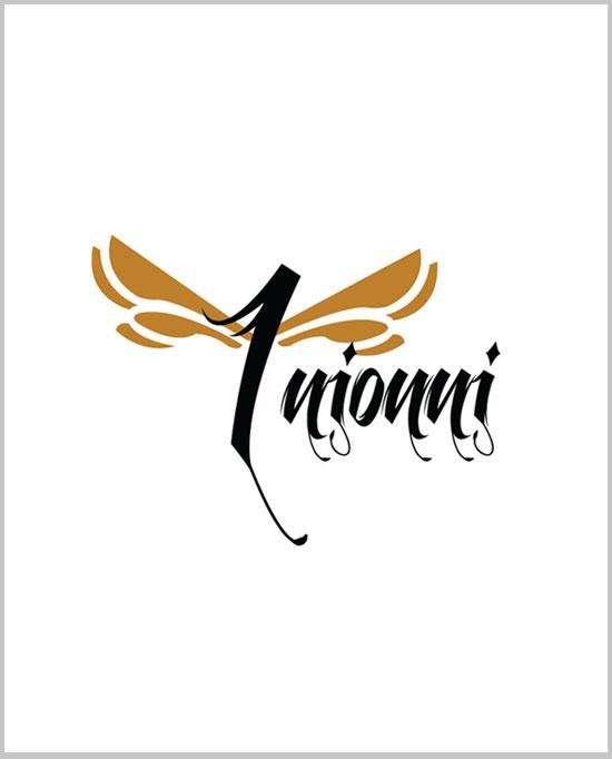 Intujuri Logo