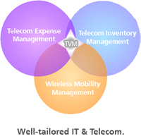 Telecom Value Management